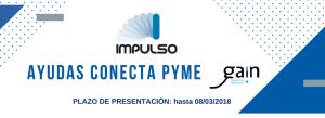 Ayudas Conecta Pyme