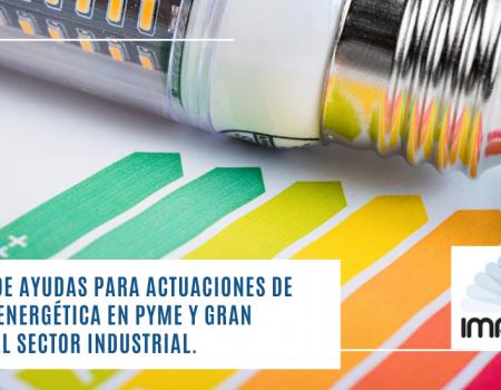 PROGRAMA de AYUDAS PARA ACTUACIONES DE EFICIENCIA ENERGÉTICA EN PYME