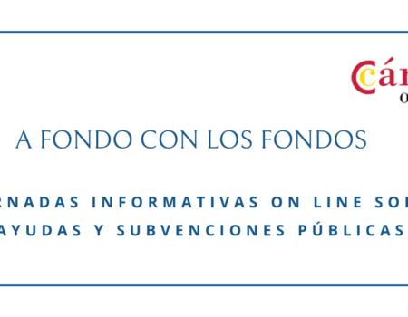 WEBINAR INFORMATIVO para tratar ayudas y subvenciones públicas para las empresas asturianas